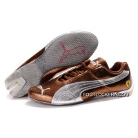 Mens Puma Ferrari In Brown/Sier 2018 For Sale