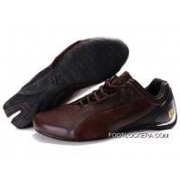 Ens Puma Fluxion In Brown 2018 New Style