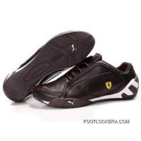 2018 For Sale PUMA Tour Cat Lo Shoes In Chocolate-White 02